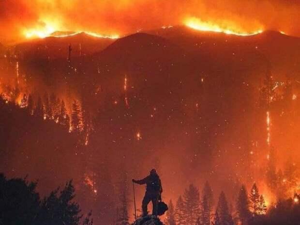На западном побережье США возросло число жертв лесных пожаров