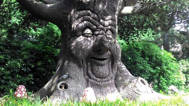 Если бы деревья могли говорить