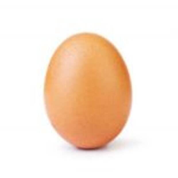 Фото куриного яйца набрала 26 000 000 лайков и это абсолютный рекорд (фото дня)