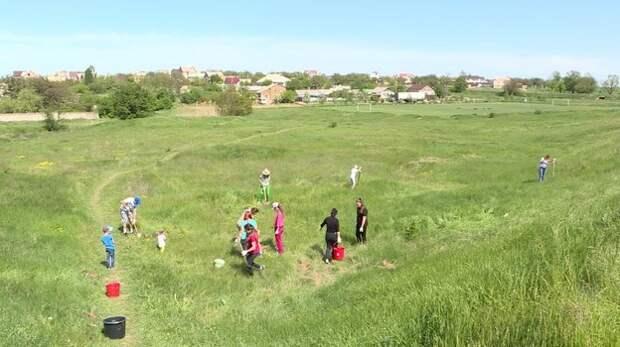 350 новых деревьев высадили под Симферополем