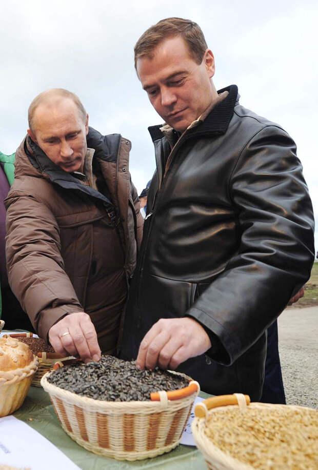 Почему русские так любят семечки?