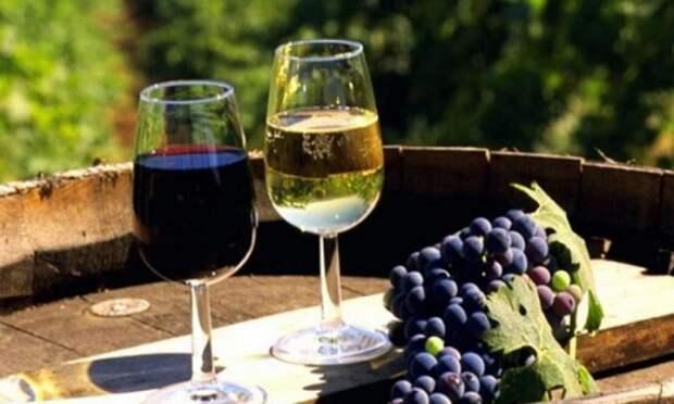 В Крыму с 4 ноября начнет работу бесплатный Музей вина