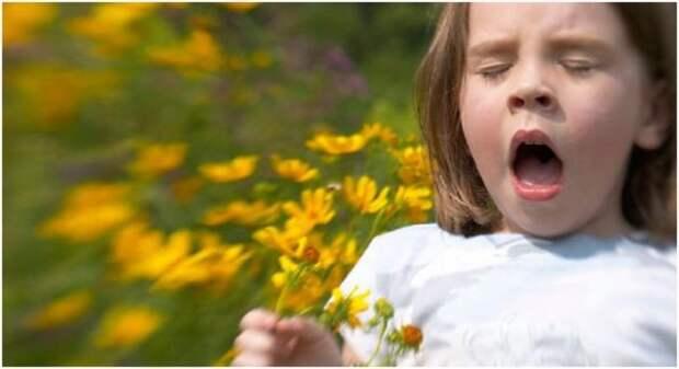 Аллергологи дают рекомендации по диагностике и лечению аллергии