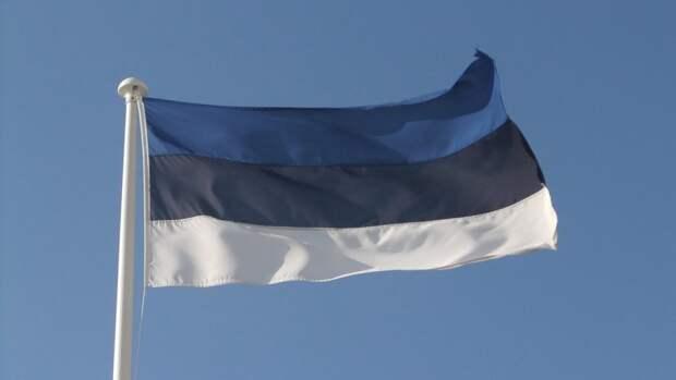 В Эстонии указали на невозможность ратификации пограничного договора с Россией
