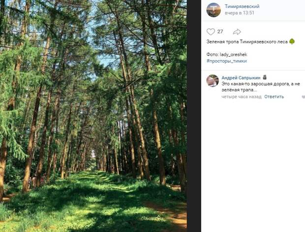 Фото дня: зеленая тропа в Тимирязевском лесу