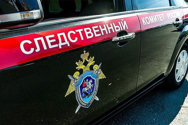 Следственный комитет проверит информацию о хакерской атаке на сайт «Бессмертного полка»