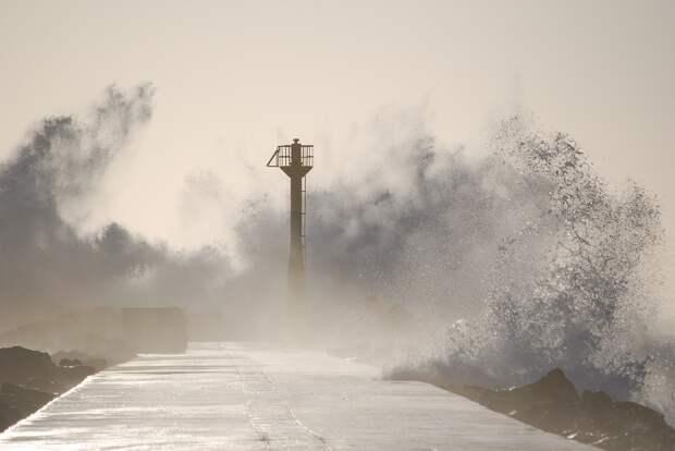 В Приморье из-за тайфуна «Майсак» погибли три человека