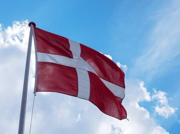 Дания объявила о приостановке поставок оружия Саудовской Аравии
