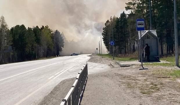 В Тюмени затруднено движение по Червишевскому тракту из-за дыма от лесного пожара