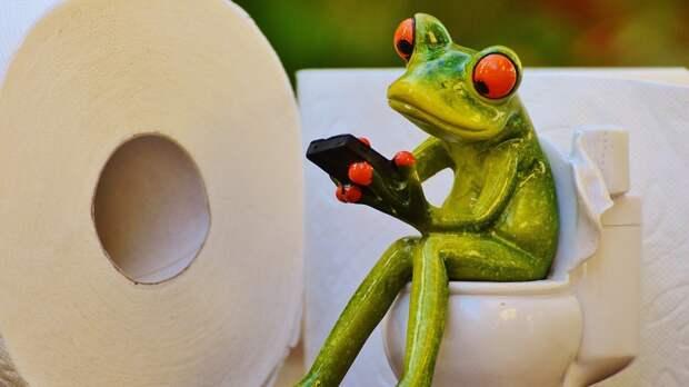 Названы пять причин, почему стоит перестать брать с собой в туалет смартфон
