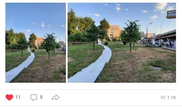 В парке «Церковная горка» ликвидировали народную тропу