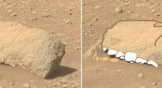 Ровер Perseverance заснял на Марсе окаменевшую голову динозавра