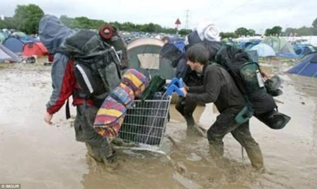 Дождливая погода способна порушить все планы туристов, расположившихся в палаточном городке животные, люди и животные, неудачные моменты, туристы, фейлы