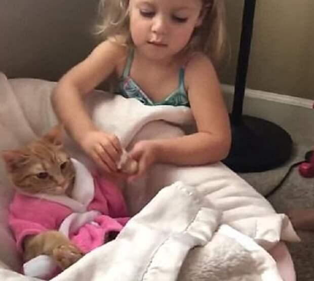 Девочка и кошка
