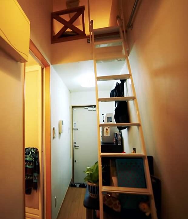 С помощью приставной лестницы можно попасть в спальню. | Фото: youtube.com.