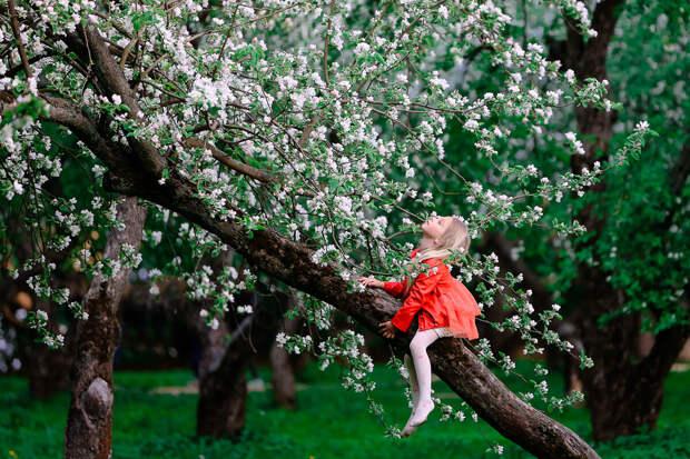 Искренние детские фото, которые заставят вас улыбнуться
