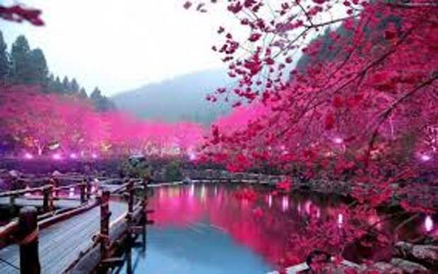 Красивые фотографии и пейзажи из нашей жизни
