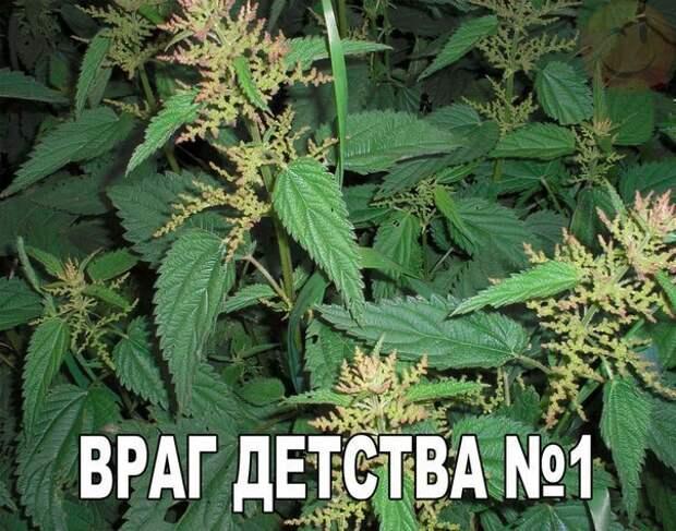 HBeti9sjdKw