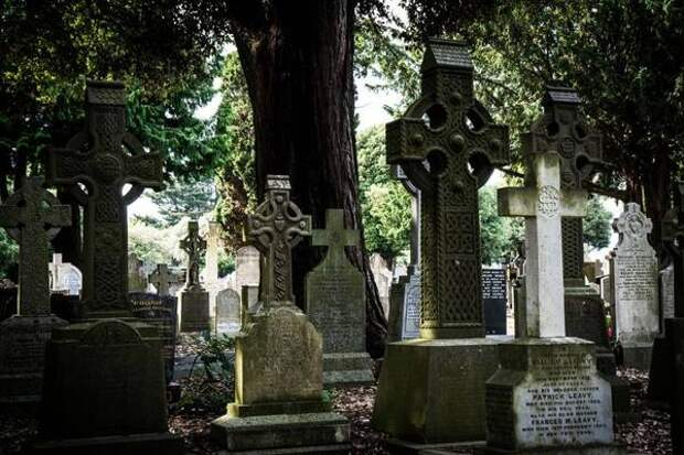 Жителей края возмутило, что нашли на могилках маленьких детей в Приморье