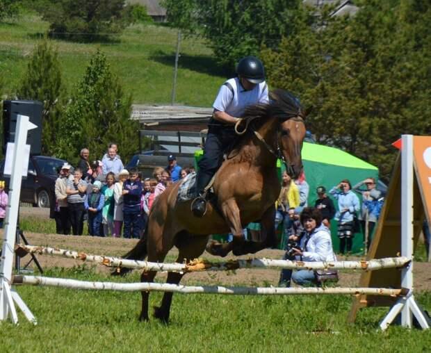 В Удмуртии пройдет фестиваль конного биатлона