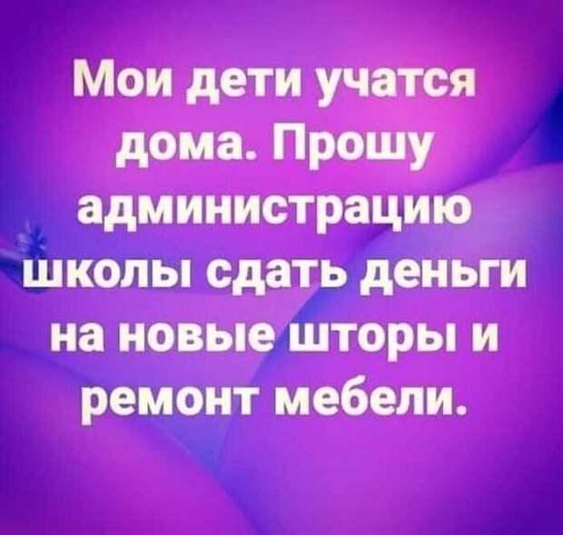 """""""Заберите его в школу, а то я повешусь или сопьюсь"""": о дистанционном российском образовании"""