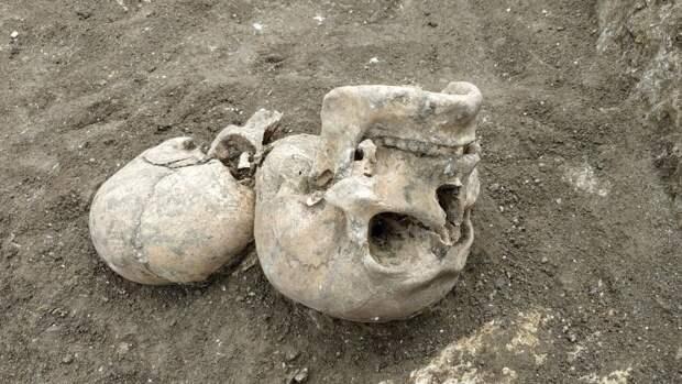 Человеческий скелет нашли в ручье в барнаульском парке