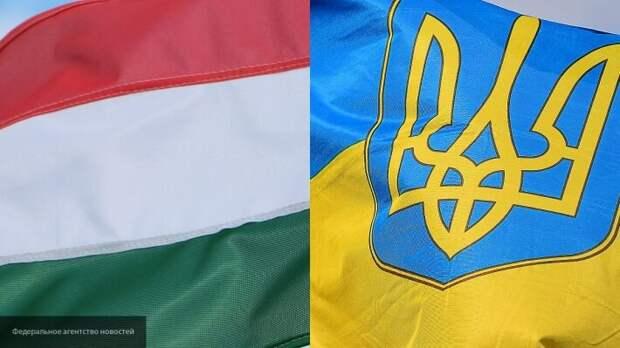 Решение Киева по Закарпатью возмутило Донбасс: венгры будут претендовать на часть Украины
