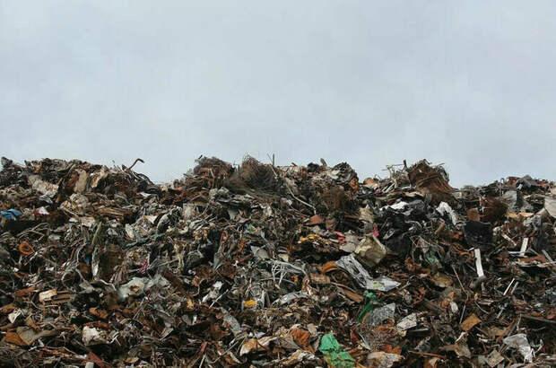 СМИ: в кабмине готовы отменить НДС за раздельный сбор мусора