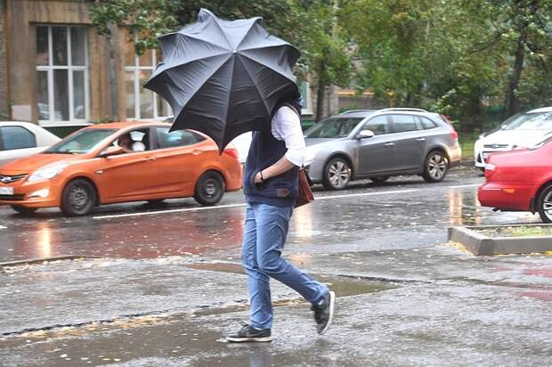 В Москве из-за непогоды пострадали шесть человек