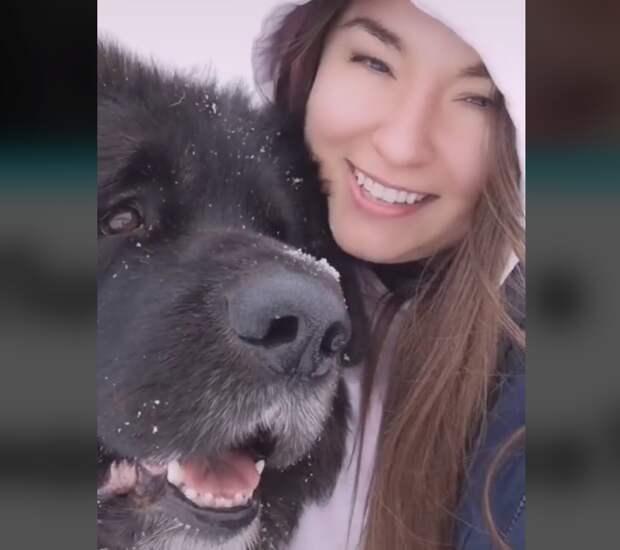 Имеет ли собака моральное право питаться лучше человека?