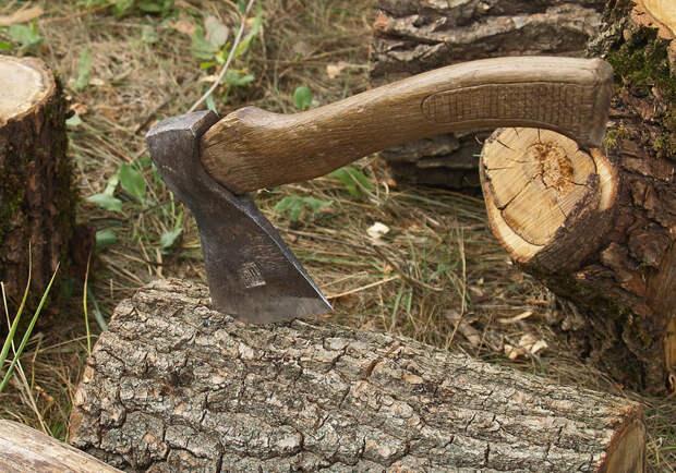Ой ё ёй ёй. В лесу раздавался топор дровосека...