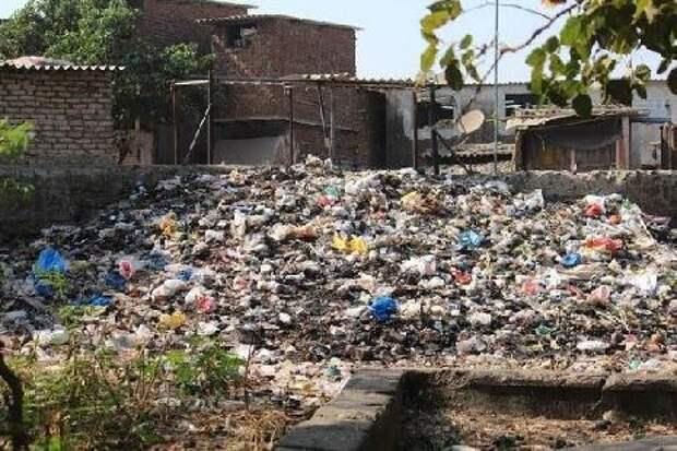 ФАС заставит недобросовестных регоператоров вывозить отходы самостоятельно