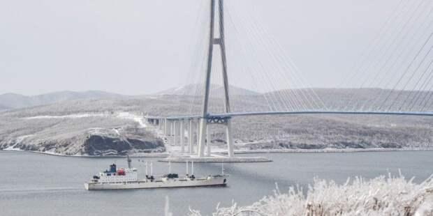 Часть острова Русского осталась без электричества