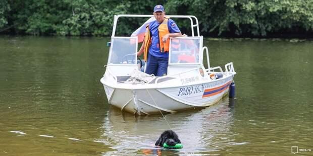 На Химкинском водохранилище спасатели вытащили из воды двух мужчин