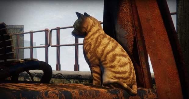 """Картинки по запросу """"документальный фильм о животных в Destiny 2"""""""