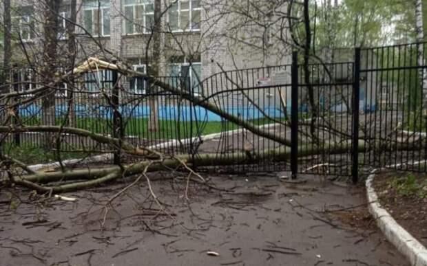Рязанские спасатели приступили к устранению последствий урагана