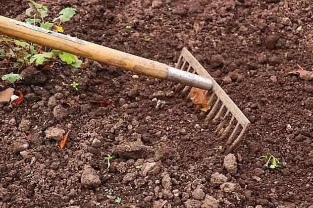 Несколько способов понизить кислотность почвы