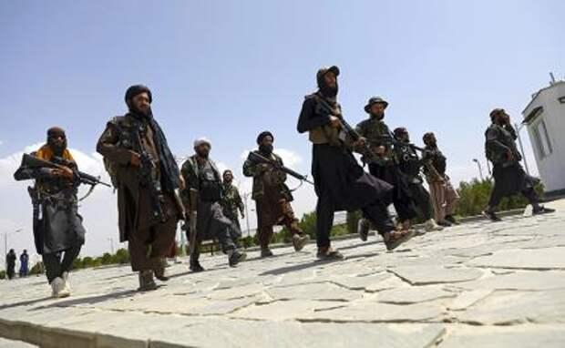 «Талибан» * и «Аль-Каида» **: Что дальше?
