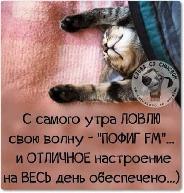 5402287_1425214655_voskresnovesenniefrazyvkartinkah3 (500x524, 31Kb)