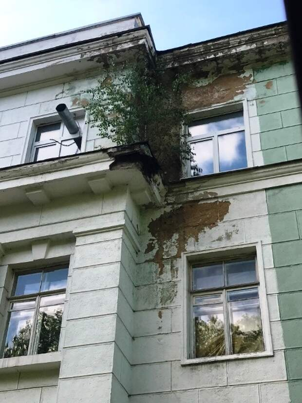 """Жуткие фото института Гамалеи, где разработали """"Спутник V"""""""