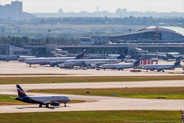 Airbus предсказал удвоение авиарынка России за 20 лет