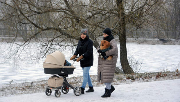 Облачная погода и до минус 5 градусов ожидается в Подольске в среду