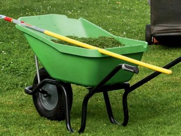 В апреле газон требует особого внимания садоводов