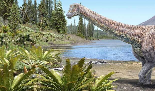 Обнаружили новый вид титанозавров: они достигали в длину 8 метров (ВИДЕО)