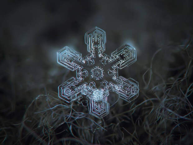 Красота снежинок на удивительных снимках