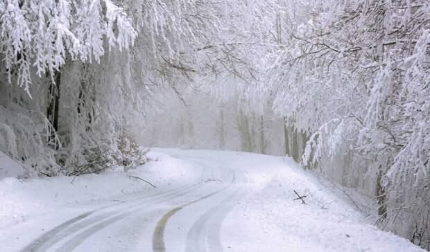 Губернатор Василий Голубев попросил ростовчан готовиться каномальному снегопаду