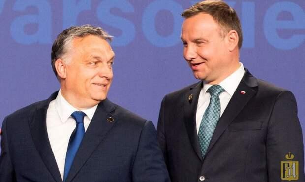 Польша и Венгрия потирают руки: конфликт в Донбассе может привести к разделу Украины