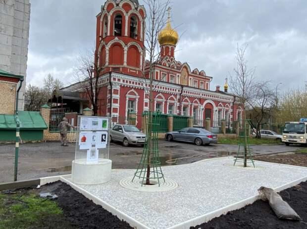 На Шереметьевской высадили семнадцать деревьев
