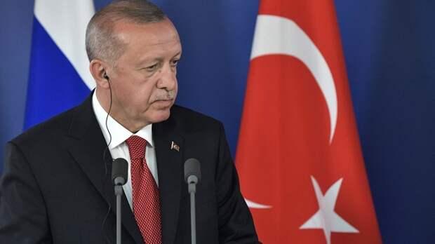 """Дерзкий"" Эрдоган избил Путина и Асада - турок в Сети высмеяли за фантазии"