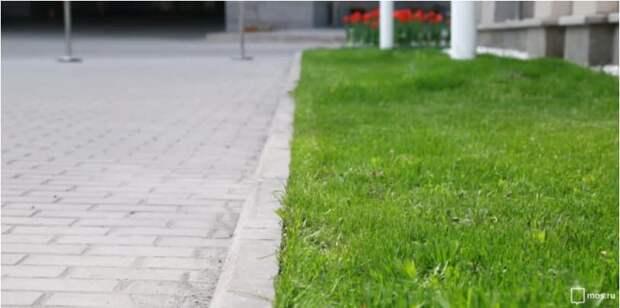 Коммуникации мешают продлить тротуар на Барышихе — управа